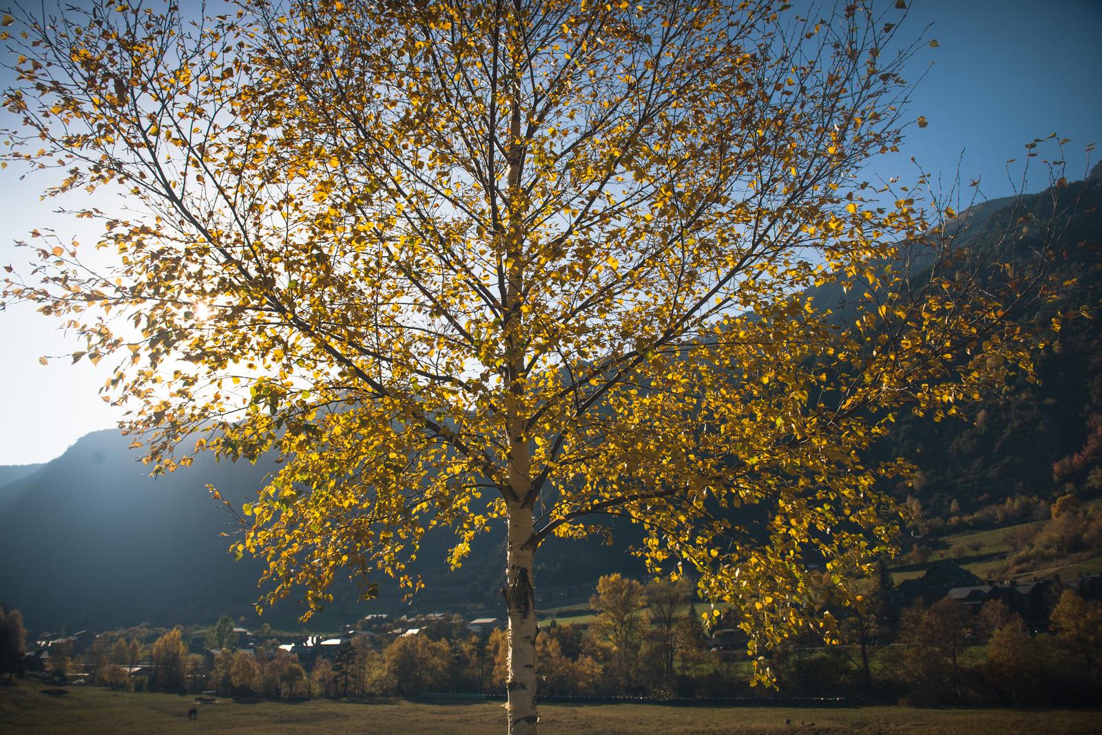 Andorra_2016-33.jpg